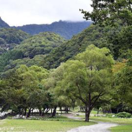 【TRAVEL】ウェルキャンプ西丹沢キャンプ場